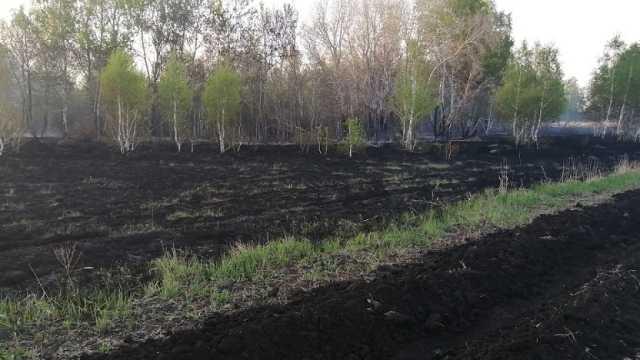 Неисправный «КамАЗ» стал причиной пожара в Костанайской области