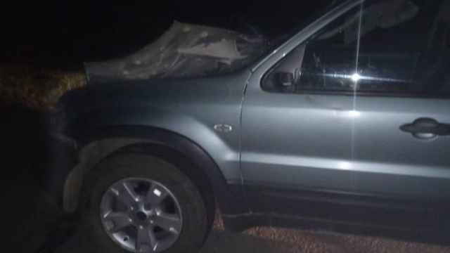 Автомобиль протаранил лошадь в Северном Казахстане