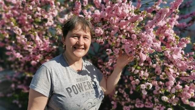 Во дворе у жителей Рудного цветет настоящая сакура