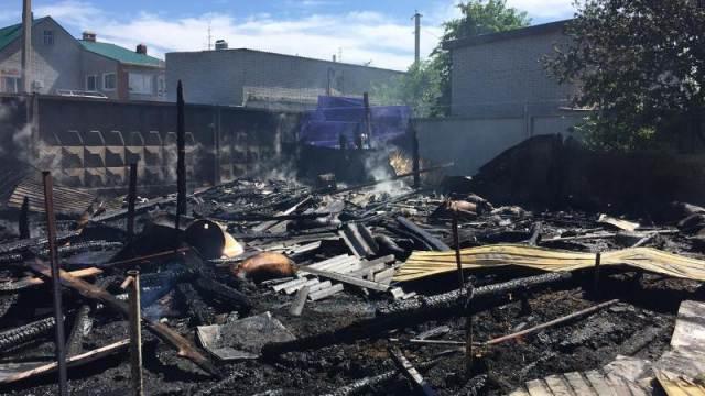 Лошадь и овцы заживо сгорели в Костанае