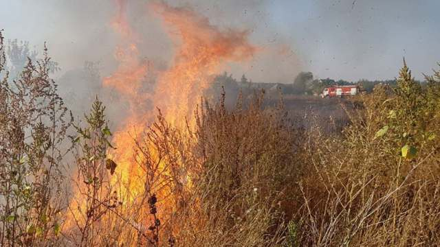 Тополиный пух, жара, июнь: Пожары тушат в Костанайской области