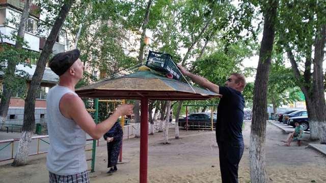 Обыкновенная драма: Как люди воронят спасали в Костанае