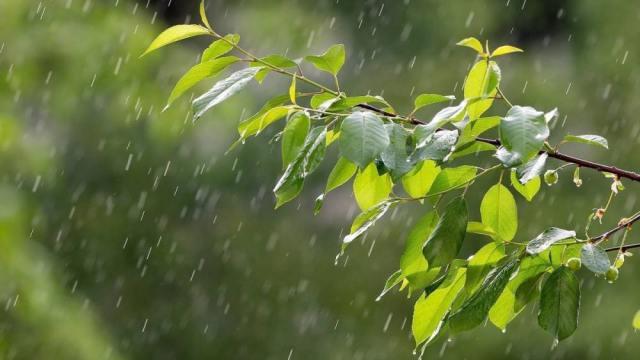 О погоде в Костанае и Рудном на среду, 28 июля