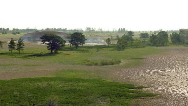 Этноаул появится в заповеднике Костанайской области
