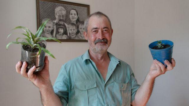 Сельчанин выращивает ананасы дома в Костанайской области
