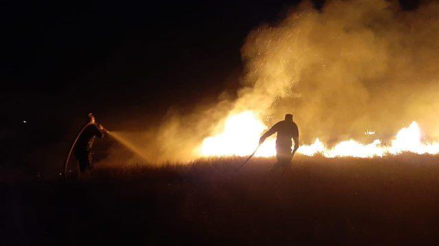 Степной пожар на 35 гектарах бушевал в Костанайской области