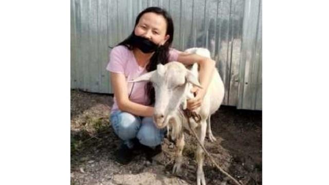 Многодетная мать из Костанайской области открыла козью ферму