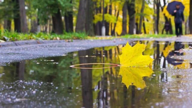 О погоде в Костанае и Рудном на субботу, 11 сентября