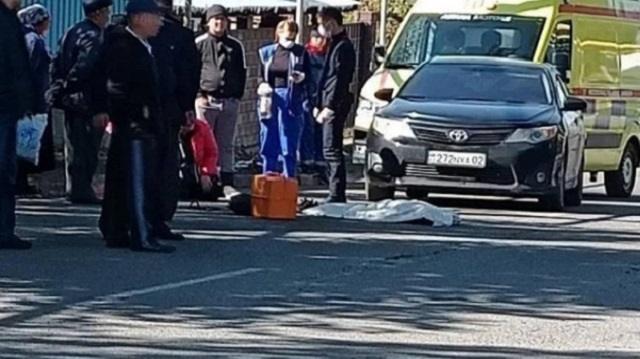 Восьмилетний ребенок испугался собаки и погиб под колесами авто