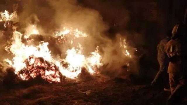 Видео: Трое детей погибли в горящих стогах сена в Казахстане