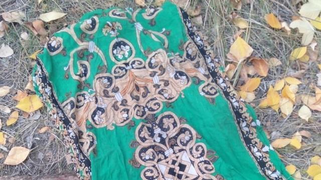 Грибники ЗКО нашли обглоданные останки женщины